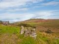 Chránené vresoviská Bodmin Moor, Foto: Phillip Capper