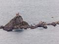 Ostrov Sveta Nedelja, Foto: Diego Delso