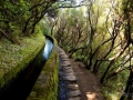 Zavlažovaci kanál - Madeira