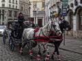 Koč ťahaný koňmi v centre Viedne