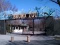 Zoo - Bronx, Foto: Ingrid Richter