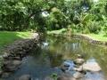 ostrov Taveuni