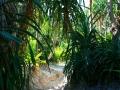Koh Phi Phi Leh, Foto: Eulinky