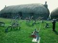 muzeum-ostrovneho-zivota_skye_01