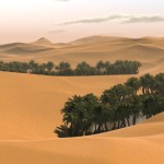 zivot na Sahare_12