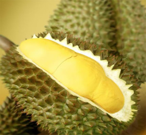Durian1