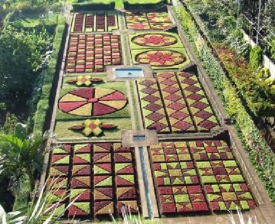 Jardim Botânico_Madeira_01