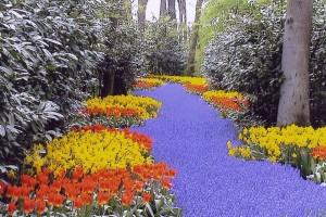 Kvetinová rieka